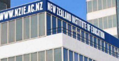 Instituto NZIE