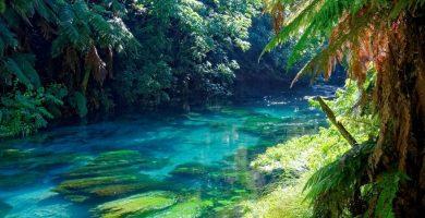 Cursos de Inglés en Hermosa vista Hamilton Nueva Zelanda