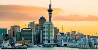 Auckland y programas de estudios